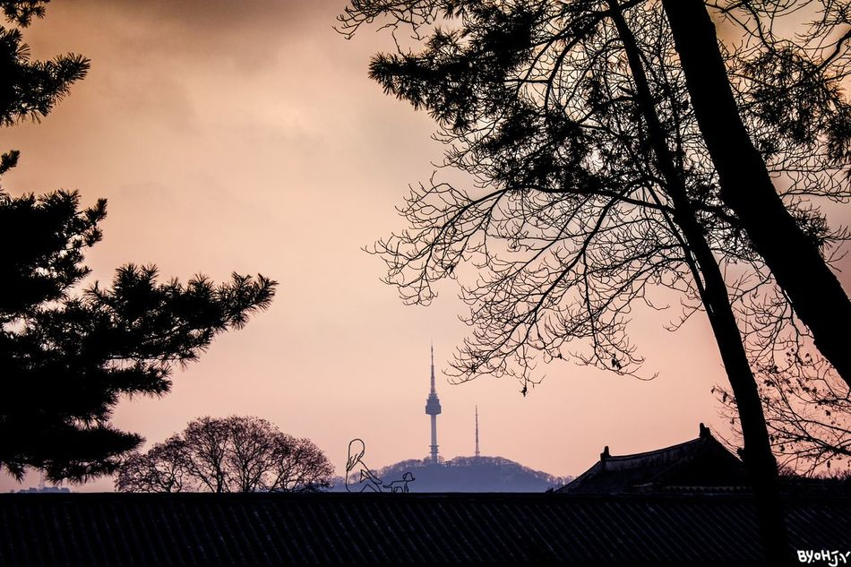 Namsan in the night@insta_oh.jiyin Sunset Tree No People Outdoors Nature Sky Night Silhouette Asian Culture ASIA Changduk Palace Palace Of Culture Day Palace Seoul Trip Namsan Tower  NamsanTower Nature Namsan Seoul Korean Traditional Architecture Built Structure Architecture Cultures Doodle Beauty In Nature
