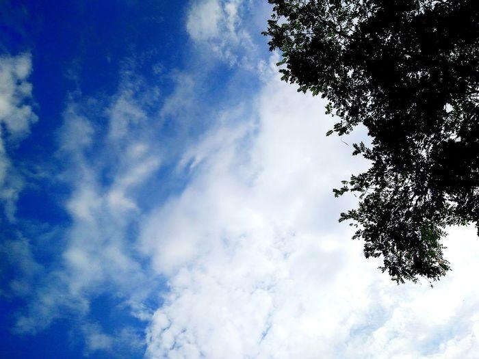 emmmmm第一次拍呢 Sky Cloud - Sky First Eyeem Photo