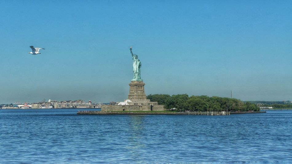 Beautiful stock photos of statue of liberty, Animal Themes, Architecture, Bird, Building Exterior
