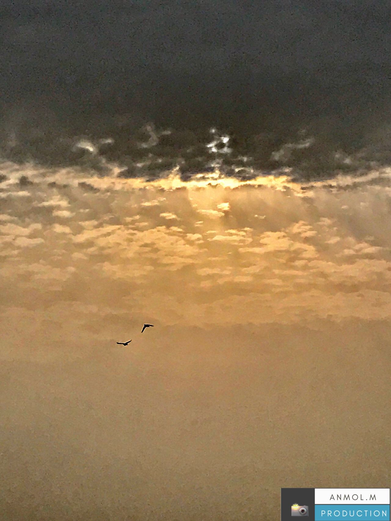 Outdoors #sky #landscape #daylight #weather #bird #sunset #evening #dawn #dusk #storm #freedom #light #travel #traveling #visiting #instatravel #instago #desert #wind #beach #solitude