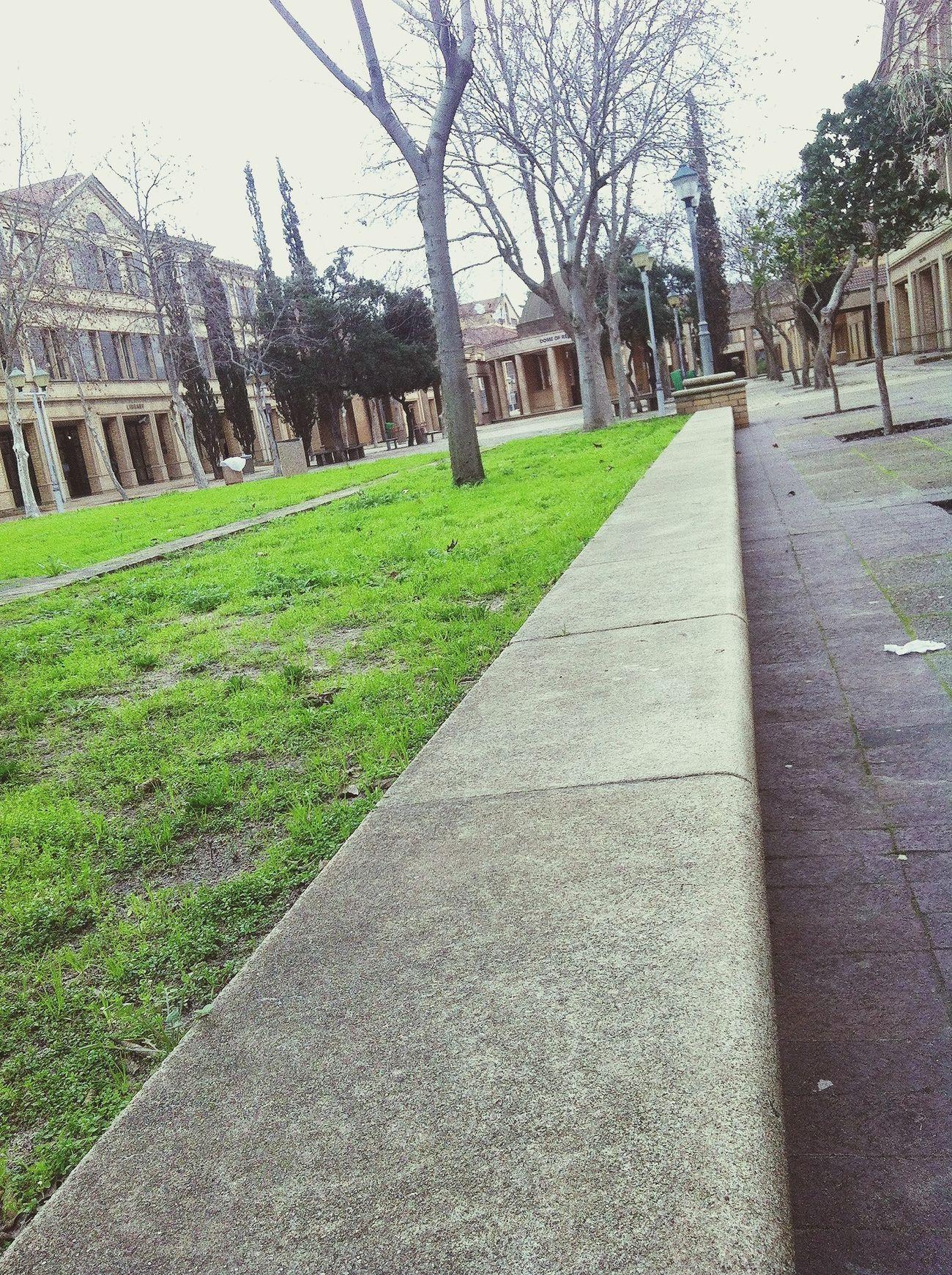 CPUT Cput University