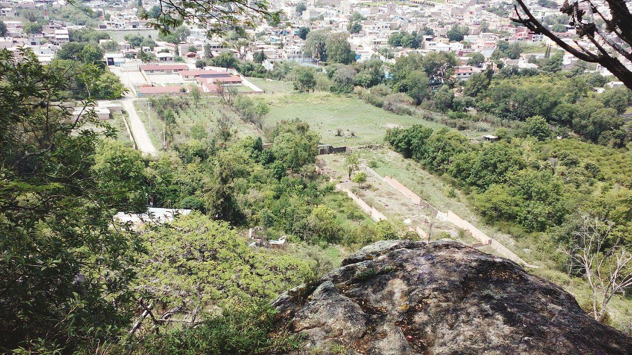 Foto tomada con smartphone en Los Ates. Nature Naturaleza