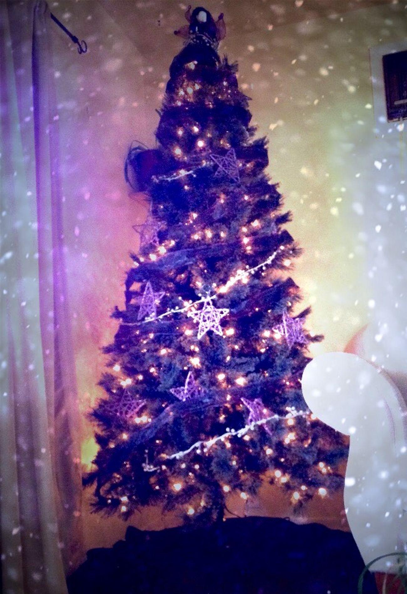 My Xmas Tree Christmas Winter Home Sweet Home