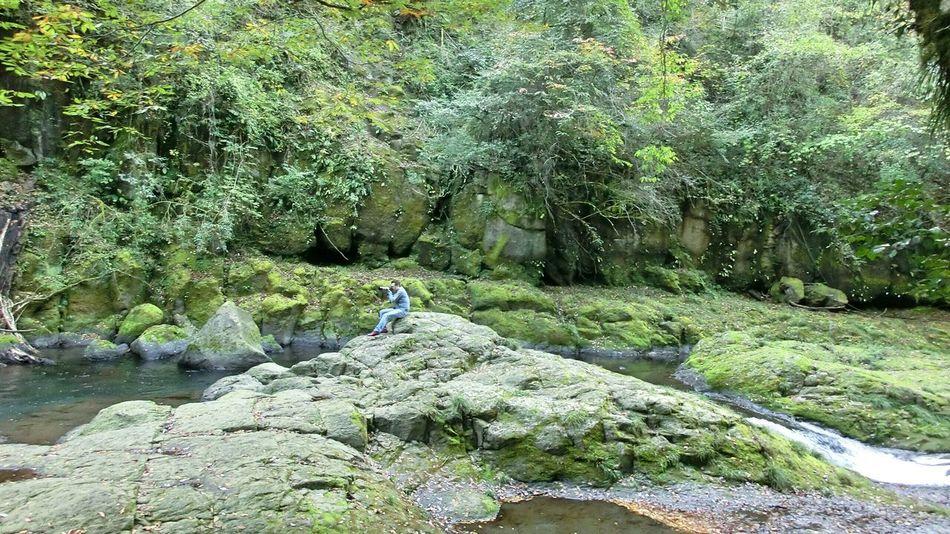 まとめて大自然✨ Valley Nature Darling Fresh Scent Enjoying Life Relaxing Hugging A Tree オレ様💕
