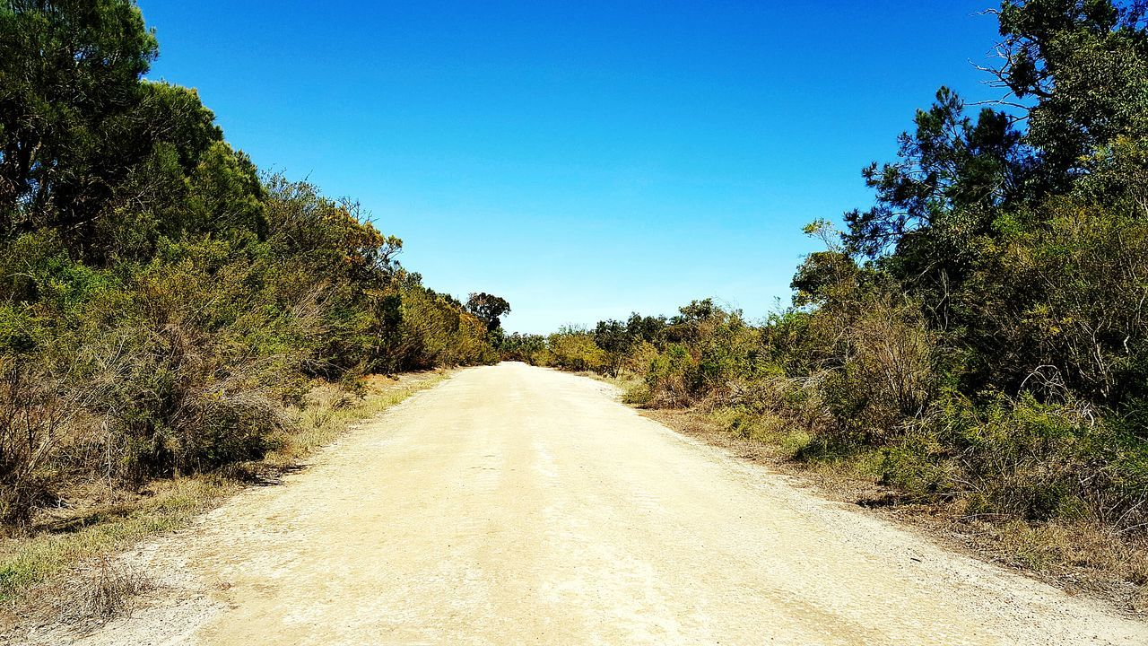 Vanishing Point Diminishing Perspective The Way Forward Non-urban Scene Tranquil Scene Tree Nature Remote Tranquility Blue Clear Sky Road Roadside Outdoors Dirt Road Australian Bushland Australian Landscape Australian Bush Australian Native Trees Bush Empty Road Clear Sky Countryside Forest Surface Level