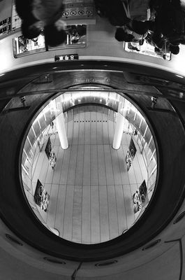lookingup at 渋谷駅 (Shibuya Sta.) by Andy