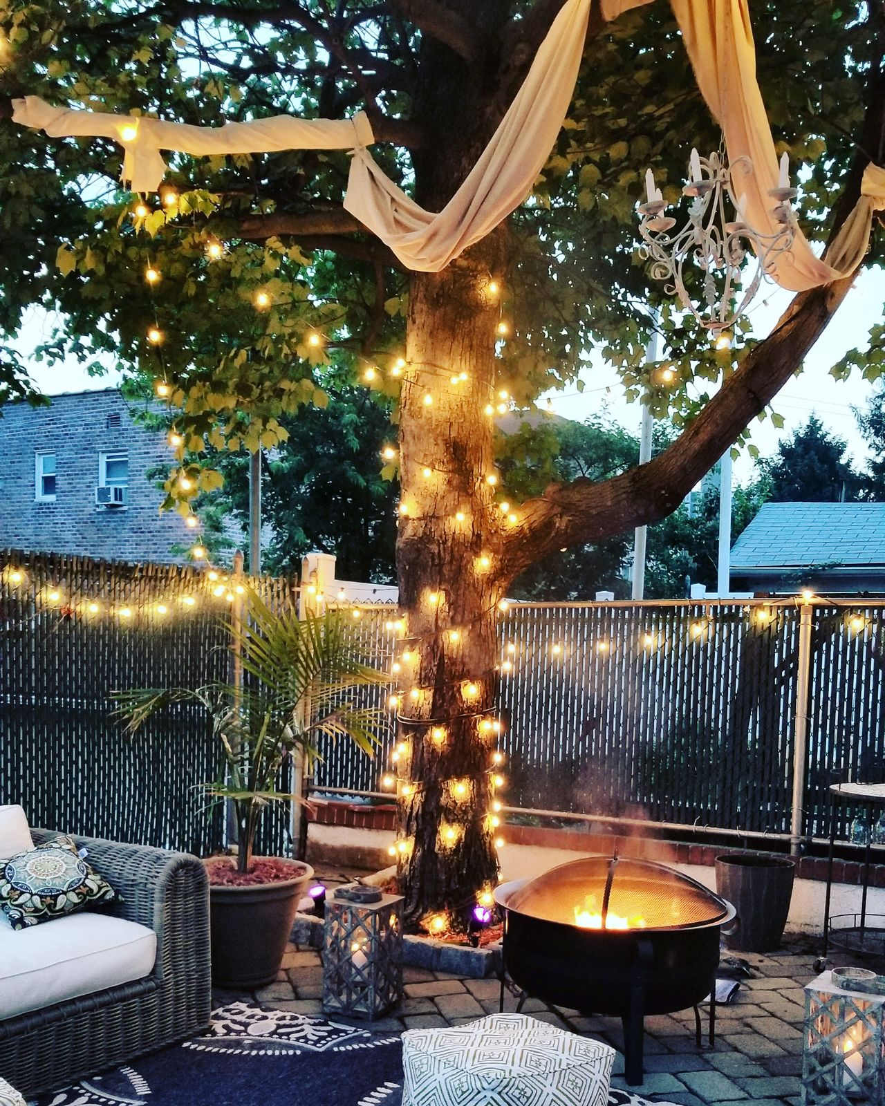 Tree No People Outdoors Backyard Firepit Yard Outside Photography Outside Oasis Lights Treelights Nature Urban Yard City Life Breathing Space