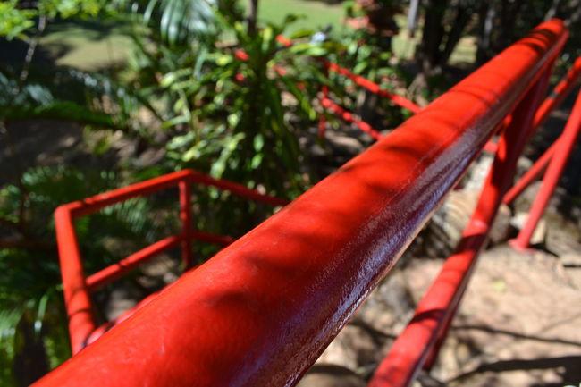 Arquitetura Corrimao Detail Detalhes Escada Foco Fotografia Nature Red Vermelho