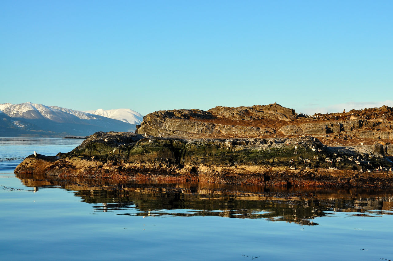 An island in the Beagle Channel with Cormorants. Argentina Beaglechannel City Coast Idyllic Landscape Mountain Nature Nature Ocean Outdoors Peak Scenery Scenic Scenics Sea Snow Southernmost Tierra Del Fuego Travel Ushuaïa View Water Wild Wilderness