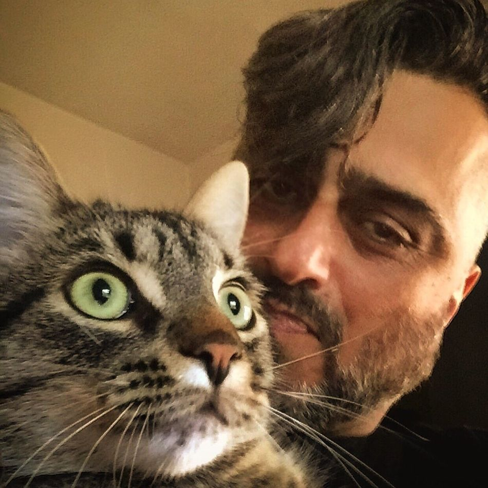 Selfie With My Friend Its Me Domestic Animals One Animal Mammal Domestic Cat Indoors  Cat Feline Whisker Looking At Camera Carnivora Togetherness Close-up Pampered Pets Young Animal Person Looking Kitten