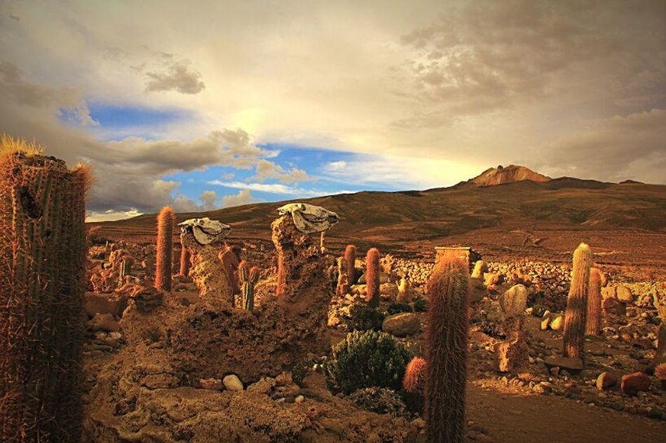 Vulcon Thunapã Salar De Uyuni Quechua Death And Life Andes Mountains Salt Desert Amazing Place Wonderful_places Landscape