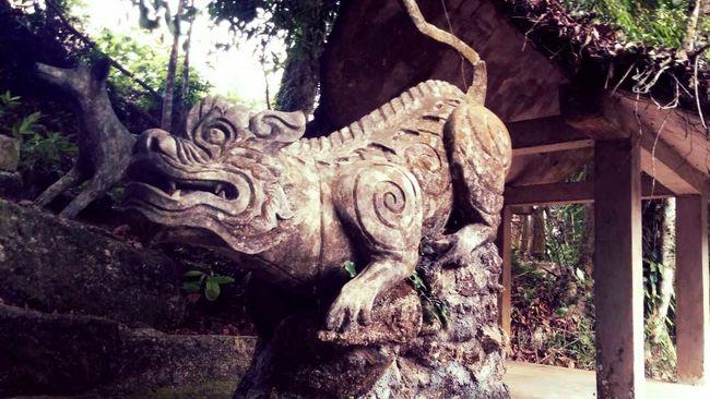 Thailand 2014 Ko Samui