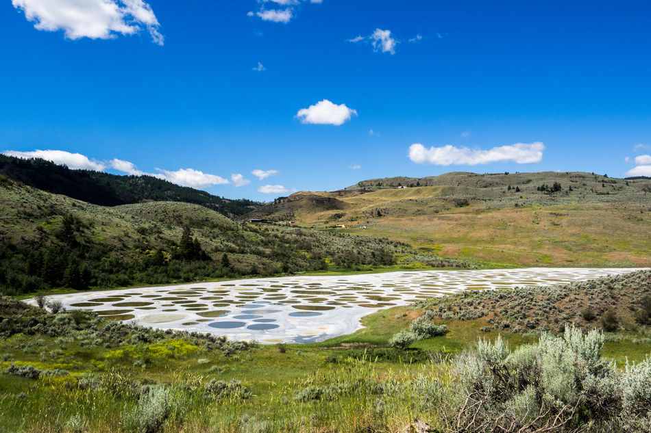 Beauty In Nature Blue Blue Sky Day Grass Landscape Mountain Nature No People Osoyoos Outdoors Scenics Sky Spotted Lake Tranquil Scene Tranquility Water