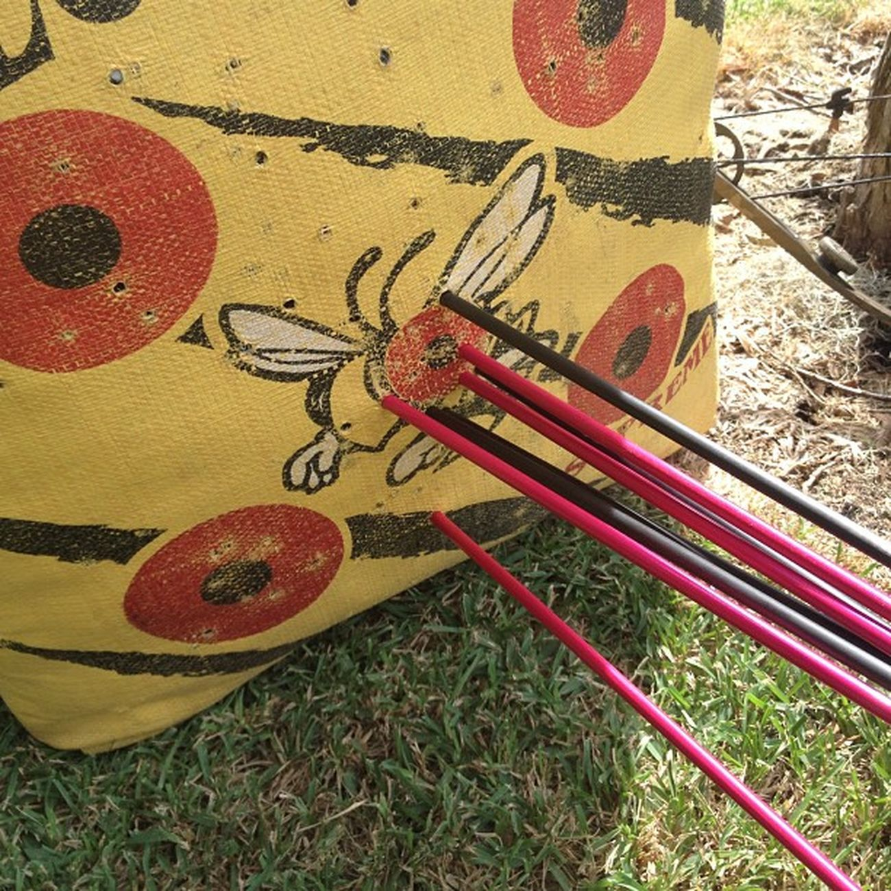 "Me and my dad were having a competition, he said he could ""beat"" me at 60 yards!! Lolololol good try old man! Shooting Bowshooting Minespink Hisisblack beathim imthebest whosnext bowshooter alotoffun loveit ?☺??"