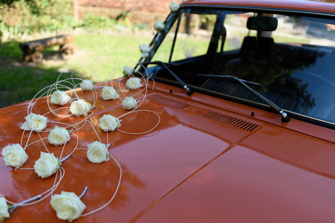 Colors Day No People Old Car Orange Outdoors Reflection The Drive Transport Transportation Tree Wedding Wedding Day Window