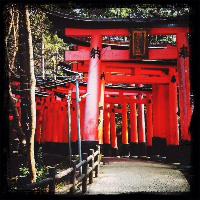 Japan tori gate