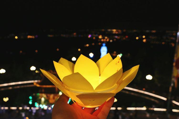 Vu Lan chùa Ba Vàng 2017