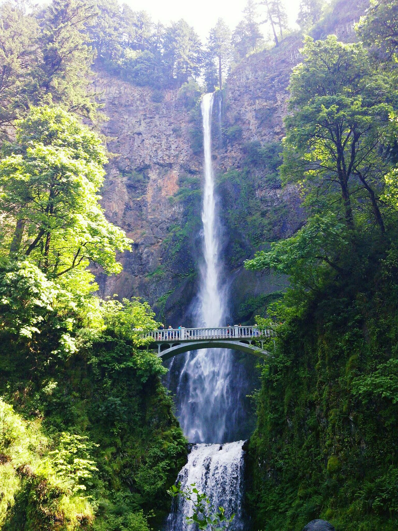 @oregon Waterfall Motion Water Long Exposure Flowing Water Splashing Nature Outdoors Scenics Tree Beauty In Nature Spraying Blurred Motion Day Speed Power In Nature Bridge - Man Made Structure Rainbow Rapid Forest Multnomah Falls
