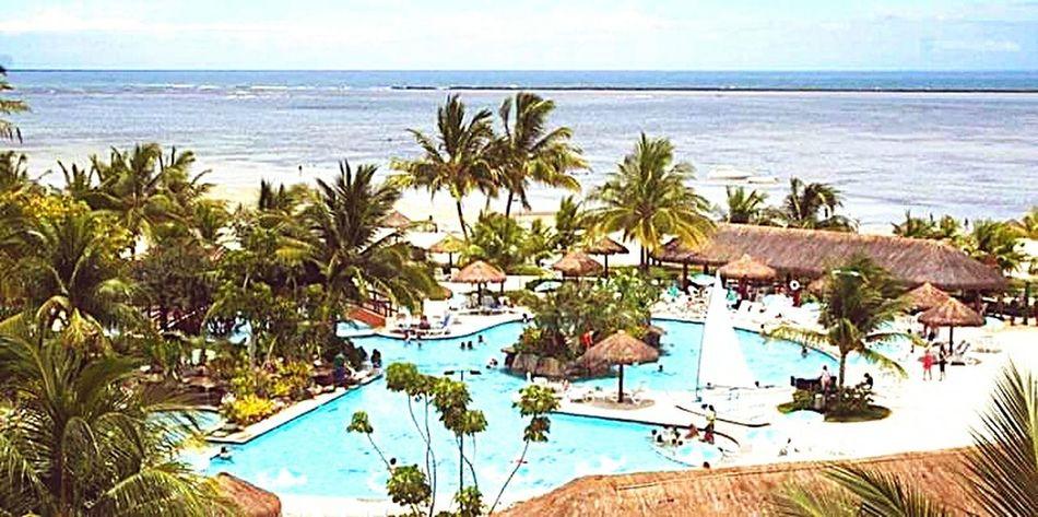 Brasil ♥ Natureza 🐦🌳 Recife, BRASIL At Hotel Vila Galé Cabodesantoagostinho Praia Pernambuco-Brasil💕💕 PernambucanaDeCoração Brasil