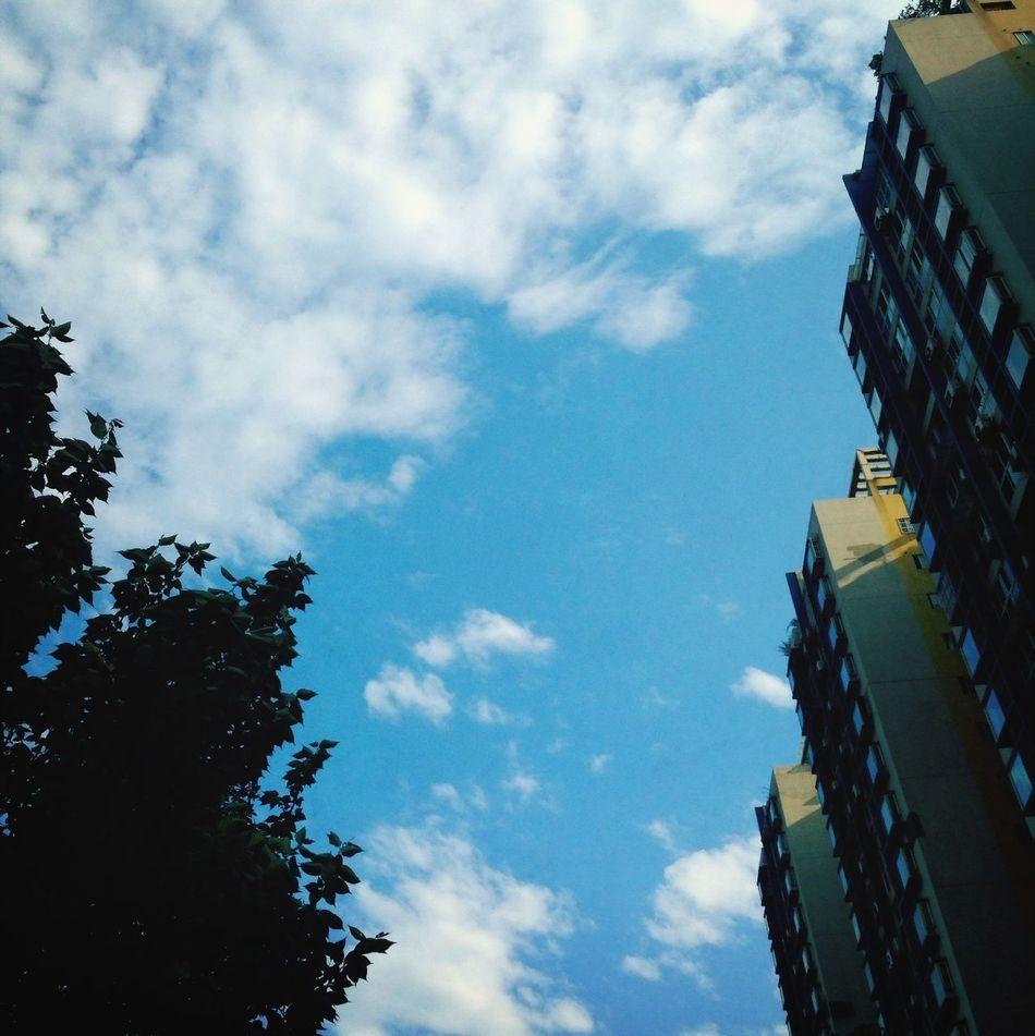 I Love The City Chengdu Cityscape Sunshine What a nice day!❤️❤️