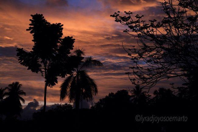 Silhouette Sunset Sky EyeEm Nature Lover