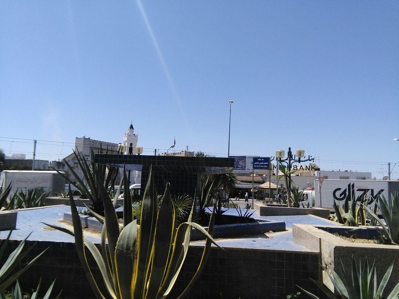 Enjoying The Sun Sunshine Eyeem Tunisia Place Public Cactus Garden