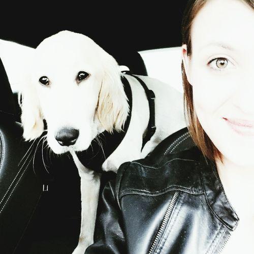 I Love My Dog My Lovely Dog I Love Pets Dog Cute Pets Petstagram