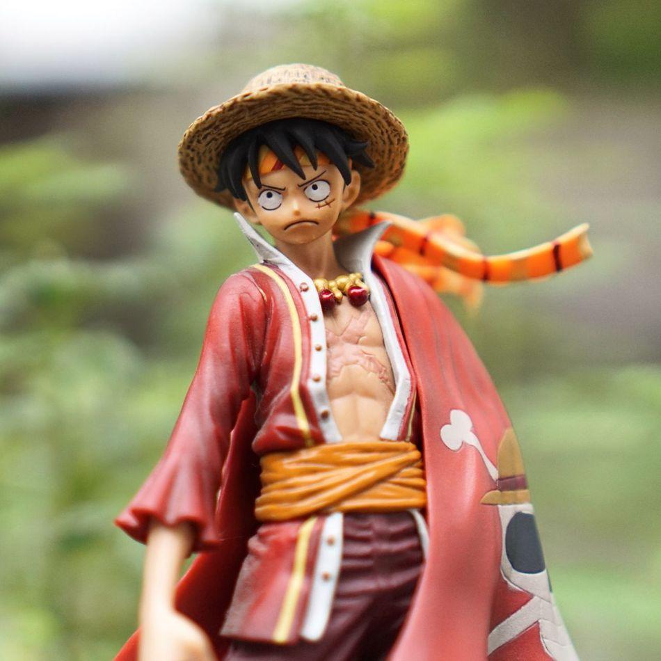 One Piece One Piece Luffy Mugiwara Pirate Toys Luffy Pirate King Bokeh Sony A6000
