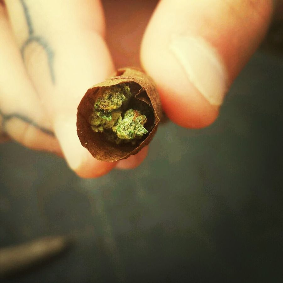 Leagalize It Marijuana Freedom Upstateny