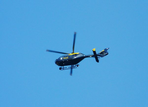 Relaxing Taking Photos Working In The Garden Transportation Police Helicopter Traffic Control
