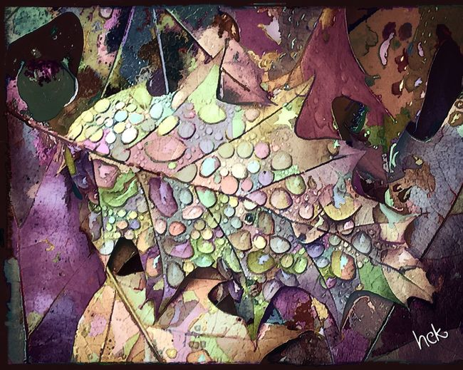 Raindrops Autumn Leaves Rainbow Of Colors Photo Art Colorful Raindrops After The Rain Digital Art