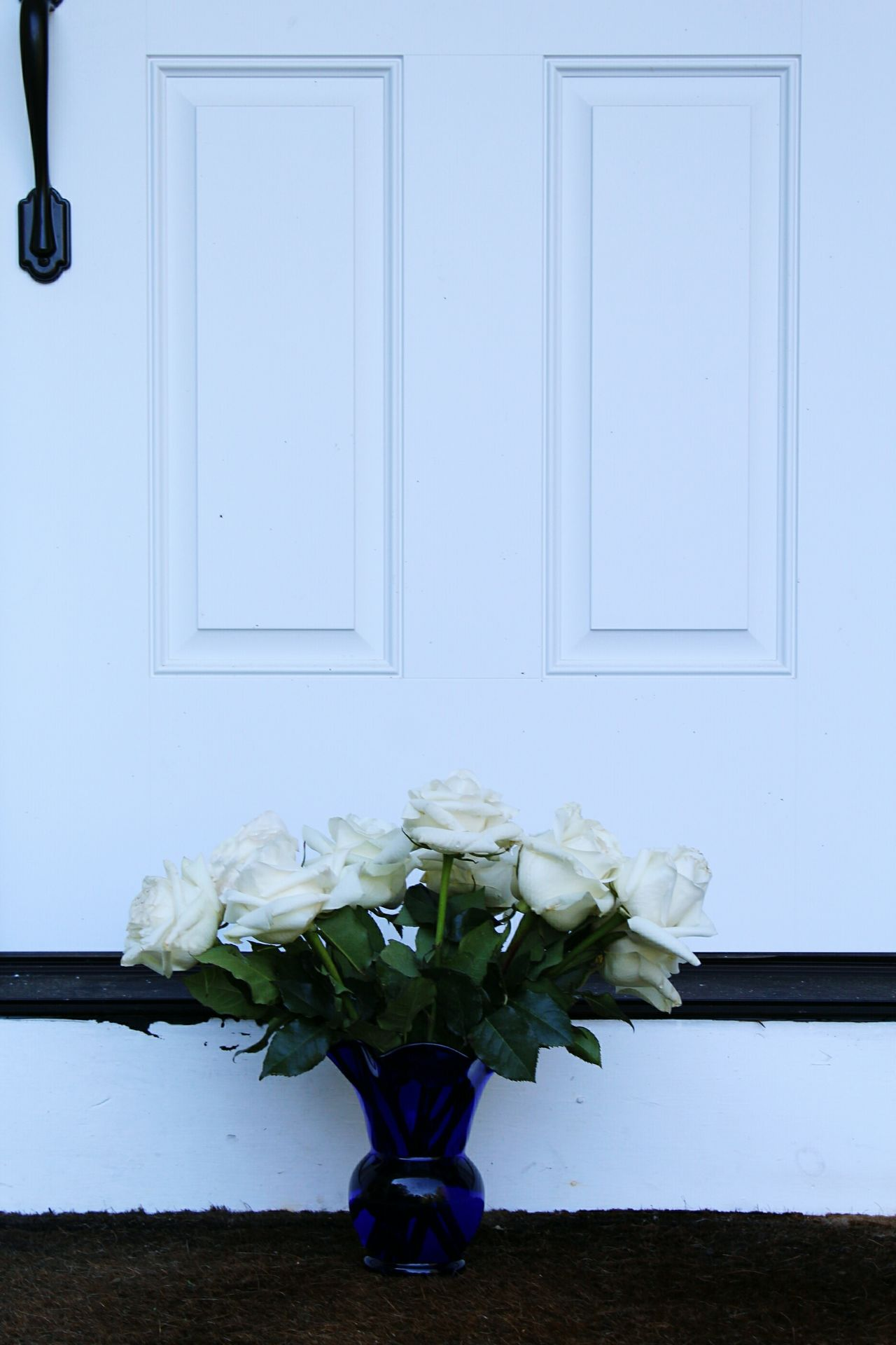 Home Is Where The Art Is Floral Rose Bouquet White Roses White White Album White On White Roses Front Door Delivery Special Delivery White Color White Rose Bouquet Of Roses Roses At Front Door EyeEm Masterclass Flowerporn Traveling Home For The Holidays Home Sweet Home Still Life Welcome Mat Blue Vase And Flowers Flowers At Door Flower Delievery Special Occasion