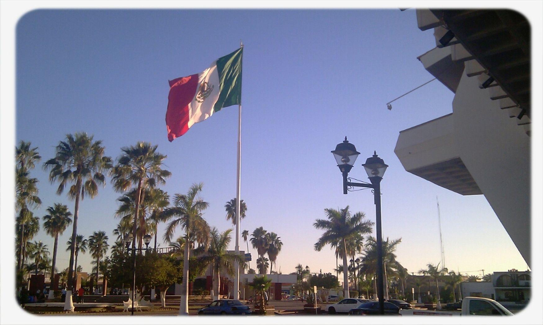 Flags Mexico Squares Banderas Sonora Navojoa BanderaDeMexico Plazas