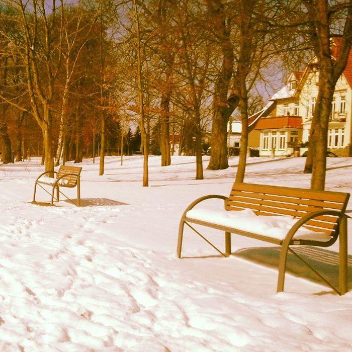Winter mit Schnee und Parkbänken