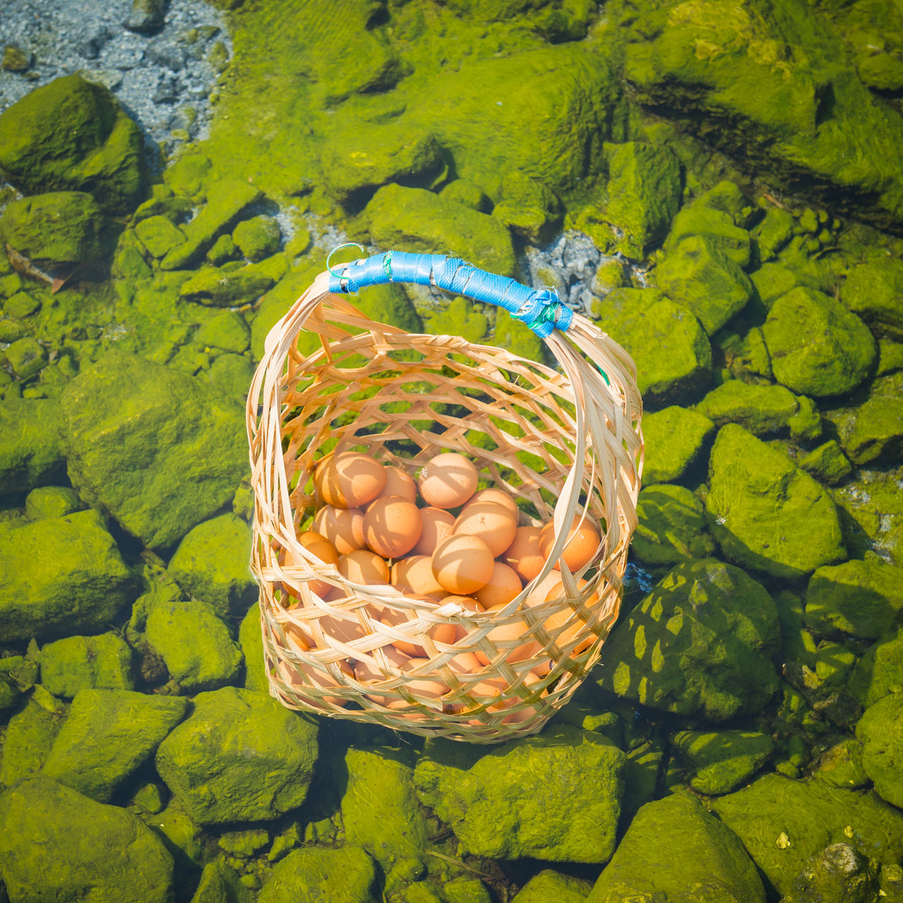 Boil egg in hot springs Basket Close-up Day Egg Food Freshness Green Ground Group Of Objects Healthy Eating Healthy Food Hot Spring Natural Nature No People Object Onsen Onsen Egg Outdoors Transparent Travel Water