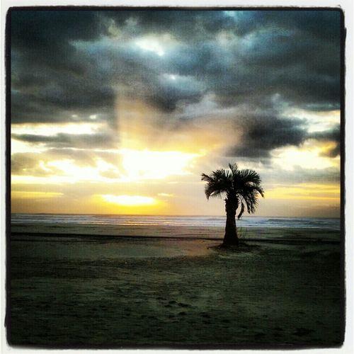 Sea Ocean Morning Sun