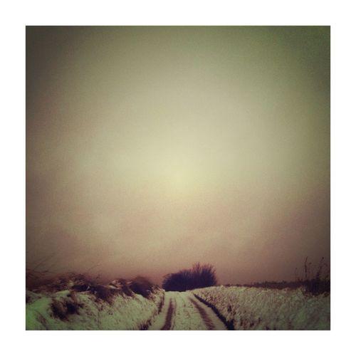 Winterscapes series. Tribegram_landscape2013