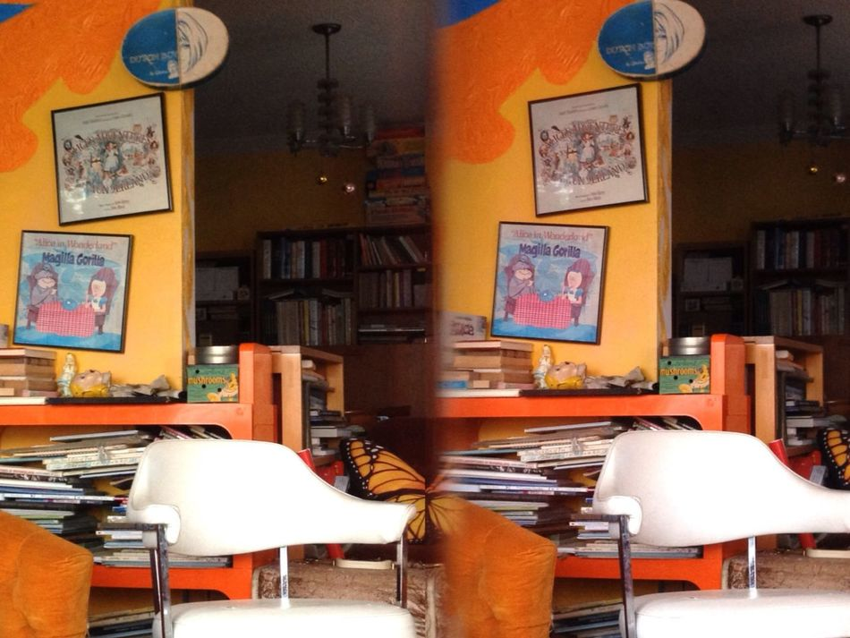 Living Room Taking Photos Stereoptic 3D Camera