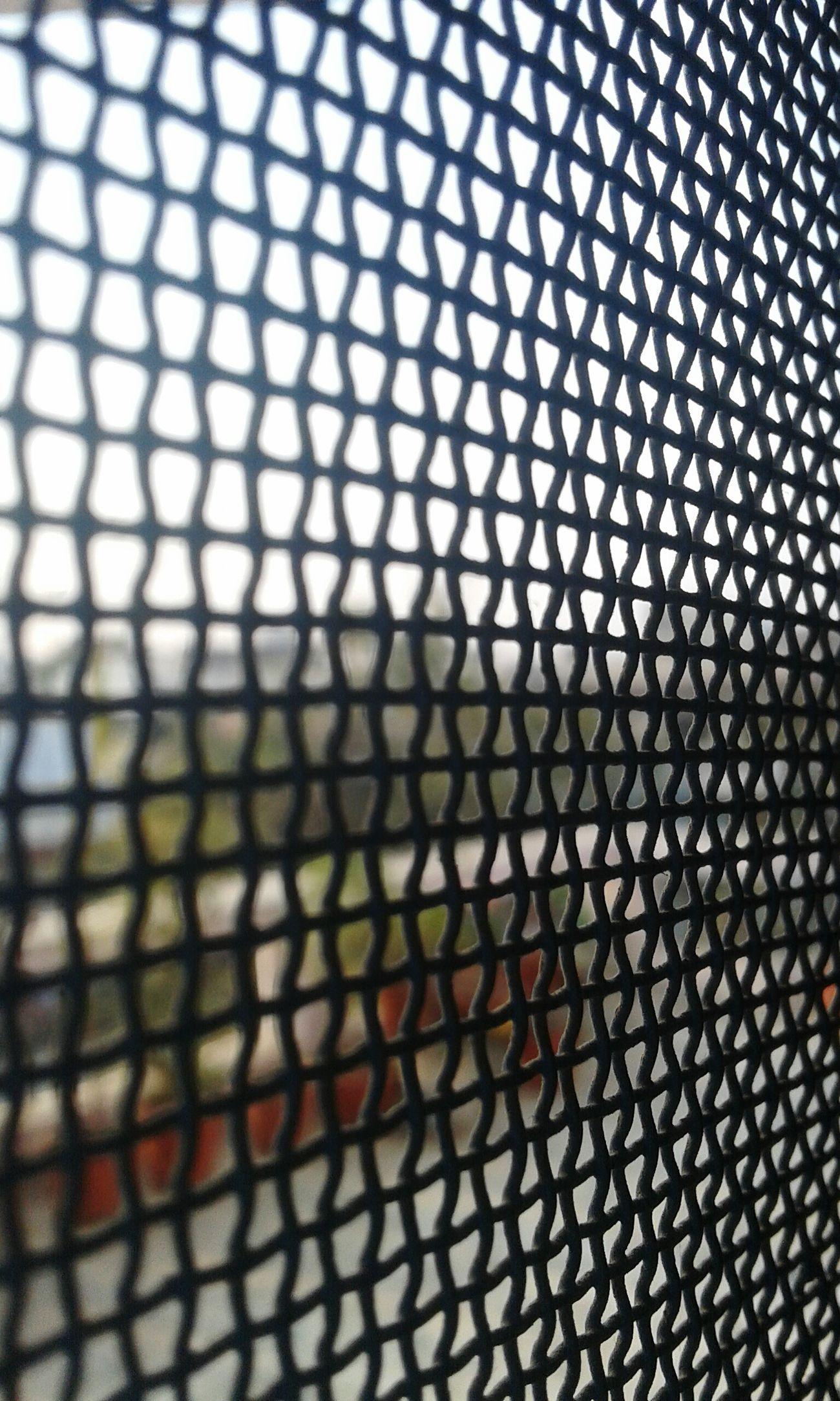 The Architect - 2016 EyeEm Awards Meshpics Mesh Wire Fence Captivity Capture Freedom World
