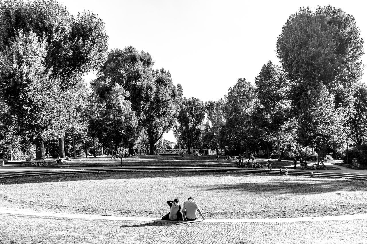 Two People Sitting On Park Lawn