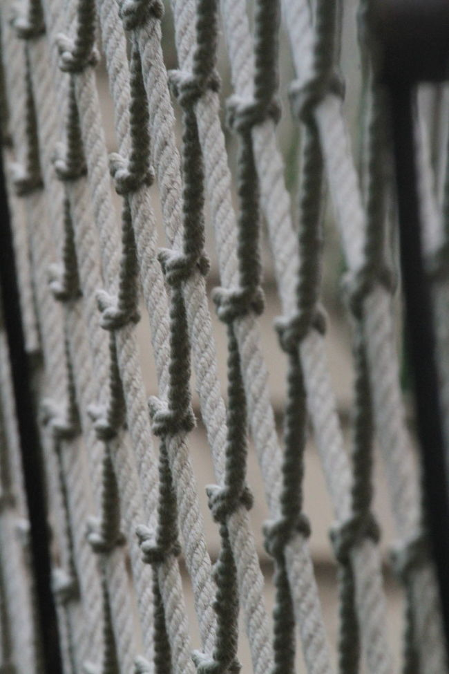 Backgrounds Close-up Complexity Full Frame Net Protection Repetition Selective Focus Separation Structure Webbed Webbing