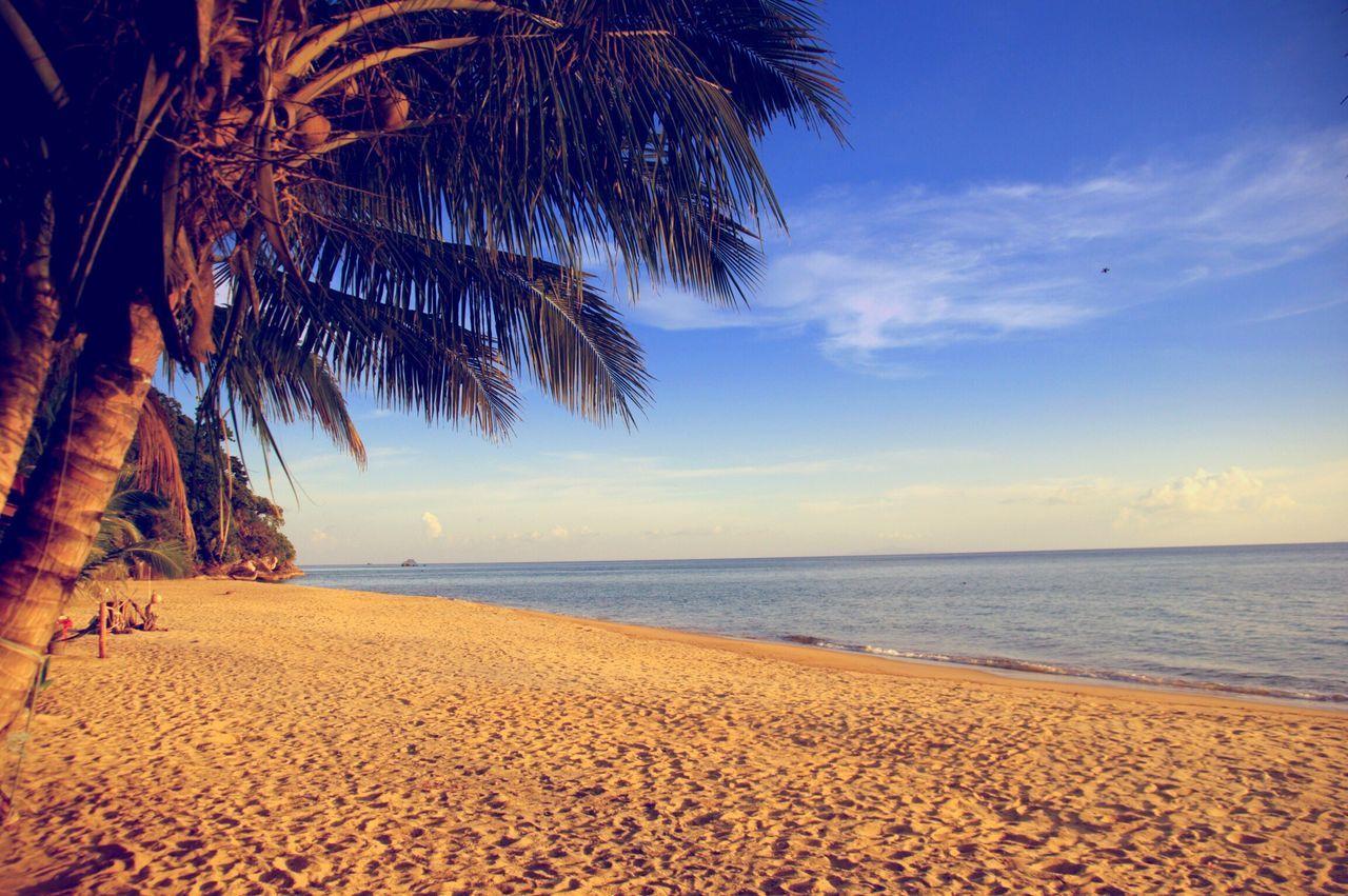 Beach Tioman Beach Sea Sand Water Palm Tree Scenics Horizon Over Water Tranquility Tree Sky Beauty In Nature Blue Calm Idyllic Shore Majestic Vacations Nature Coastline