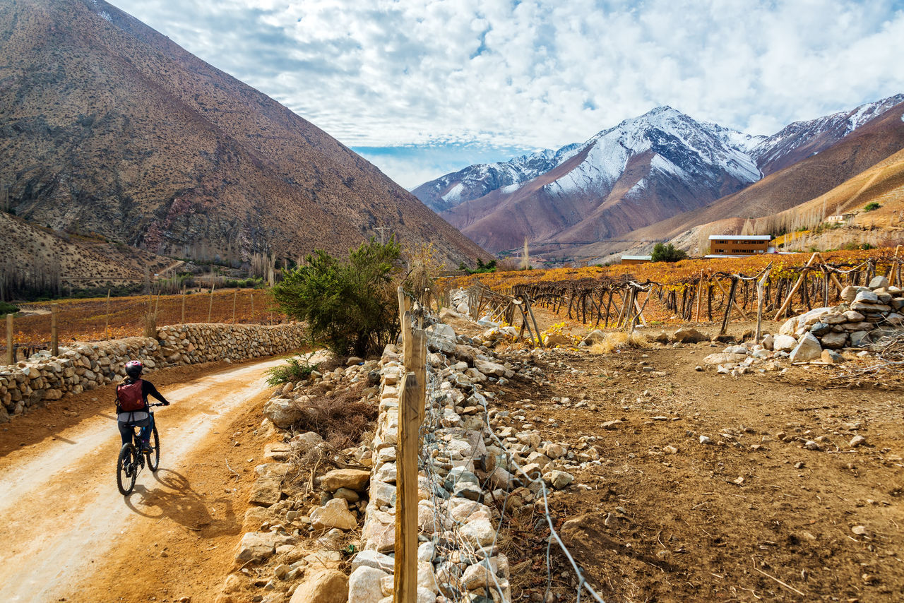 Beautiful stock photos of wein,  Adventure,  Agriculture,  Andes,  Arid Climate