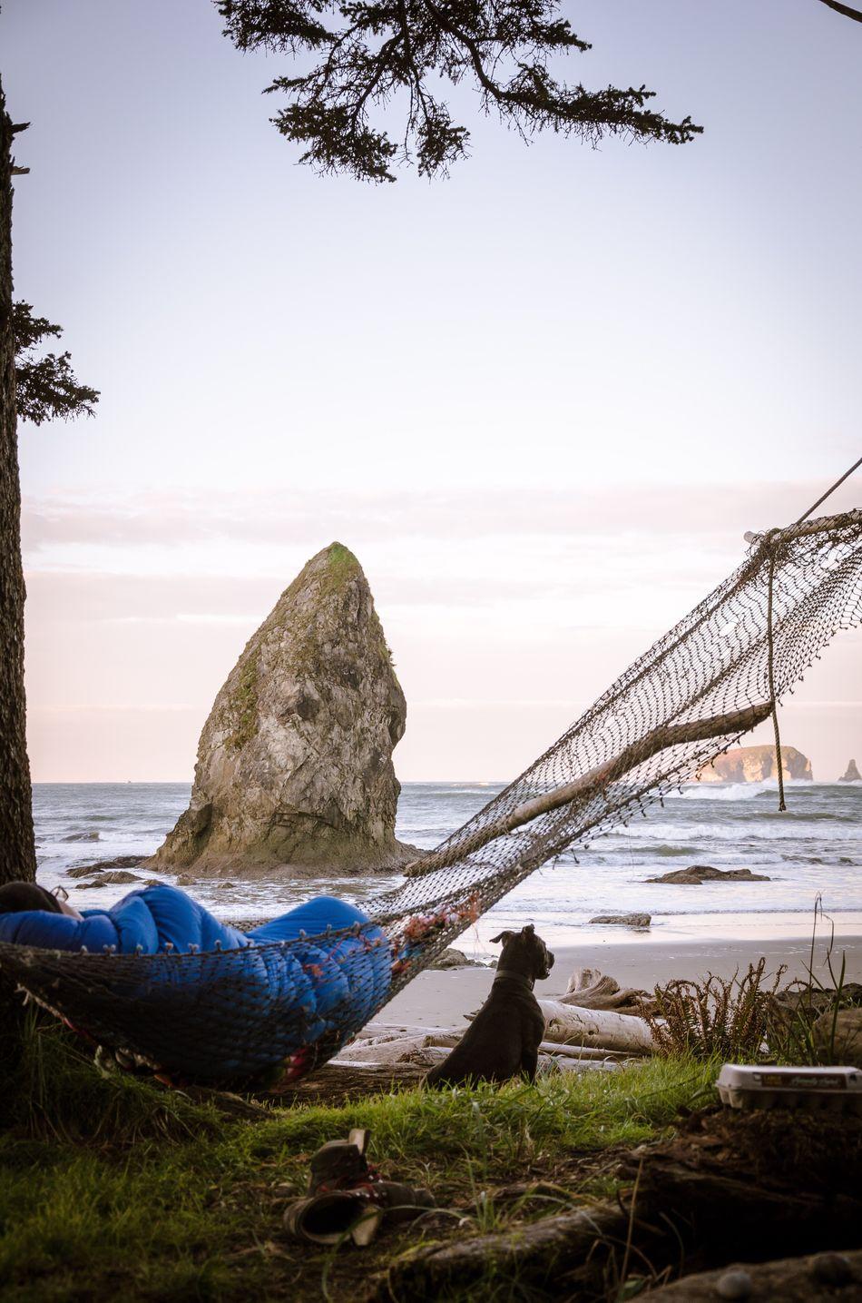 Lazy mornings Wilderness Camping PNW Olympicnationalpark Nature Ocean Hammock Dog Washington Beach