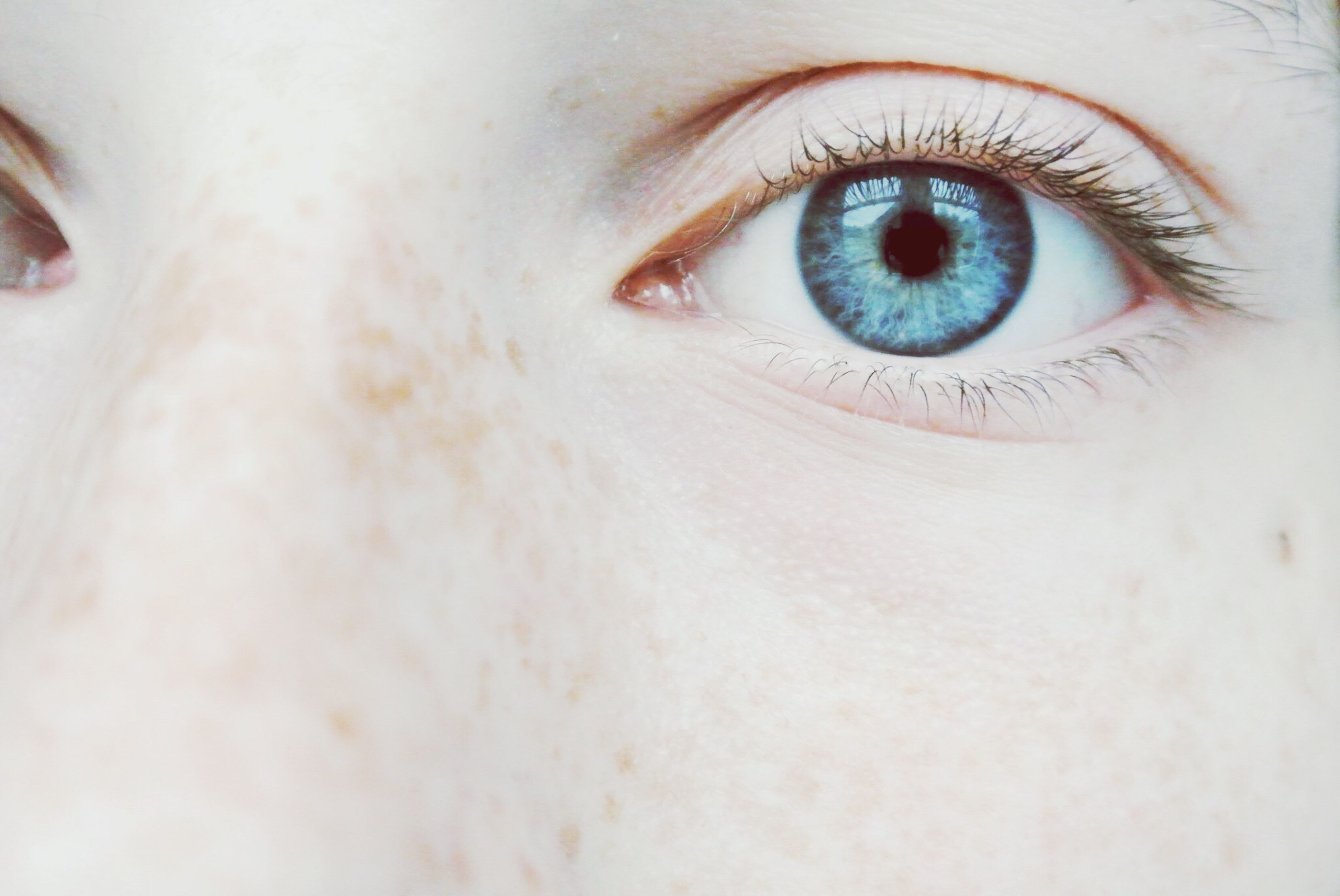 human eye, close-up, eyelash, portrait, looking at camera, eyesight, part of, human skin, human face, sensory perception, indoors, iris - eye, lifestyles, eyeball, extreme close-up, headshot, person