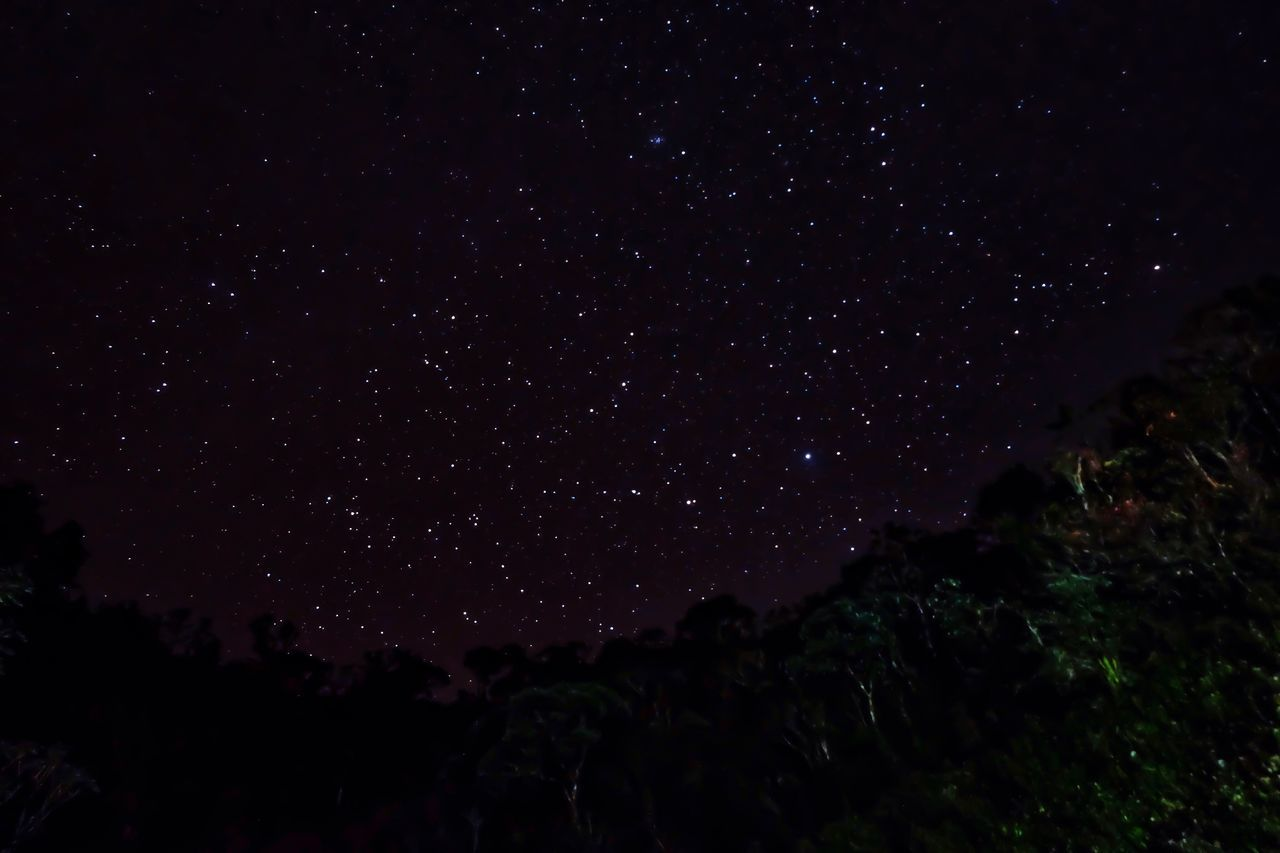 Star - Space Night Astronomy Beauty In Nature Infinity Scenics Sky Galaxy Star Field Constellation Tranquil Scene Tranquility Low Angle View No People Outdoors Space Stars FUJIFILM X-T10 Fujifilm_xseries Fujifilm Fuji Mt. Pulag Philippines