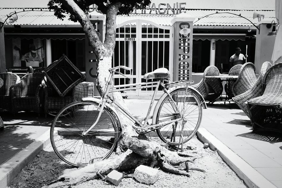 Bonaire Day Outdoors Amusement Park No People Built Structure Carousel Art Is Everywhere Travel Destinations Building Exterior EyeEm Best Shots Eye4photography  Fresh 3 City Blancetnoir Blanco Y Negro Biancoenero Blackandwhite Bycicle Lovers Bycicle Bycicle Photography