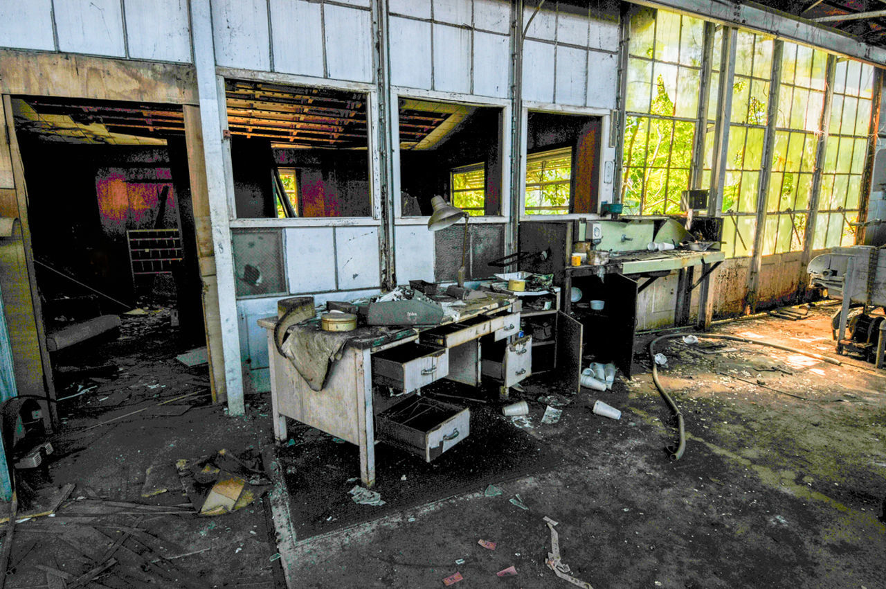 Abandon Plant Abandoned Built Structure Deserted, Deserted Building Destruction Deterioration Interior Landscape With WhiteWall, Citrus Plant, Broken Window, Vacant Building Obsolete