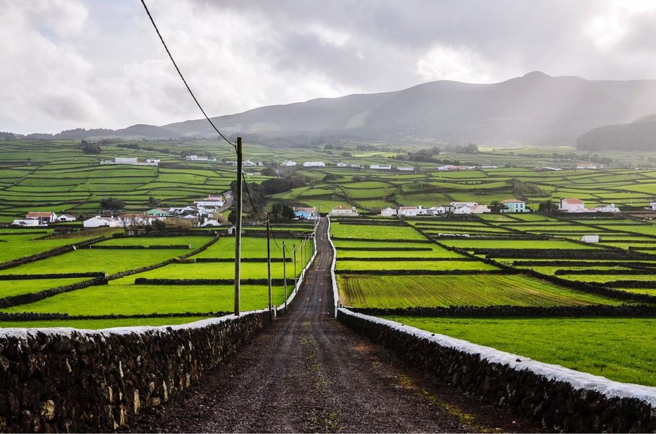 Terceira Island, The Azores. EyeEmNewHere Mountain Landscape Agriculture Field Nature Beauty In Nature Rural Scene Farm Tranquil Scene Scenics Outdoors Tranquility Sky Day Green Color Terraced Field Mountain Range Art Is Everywhere EyeEmDiversity Terceira Island Clouds And Sky Azores Gravel Road Portugal