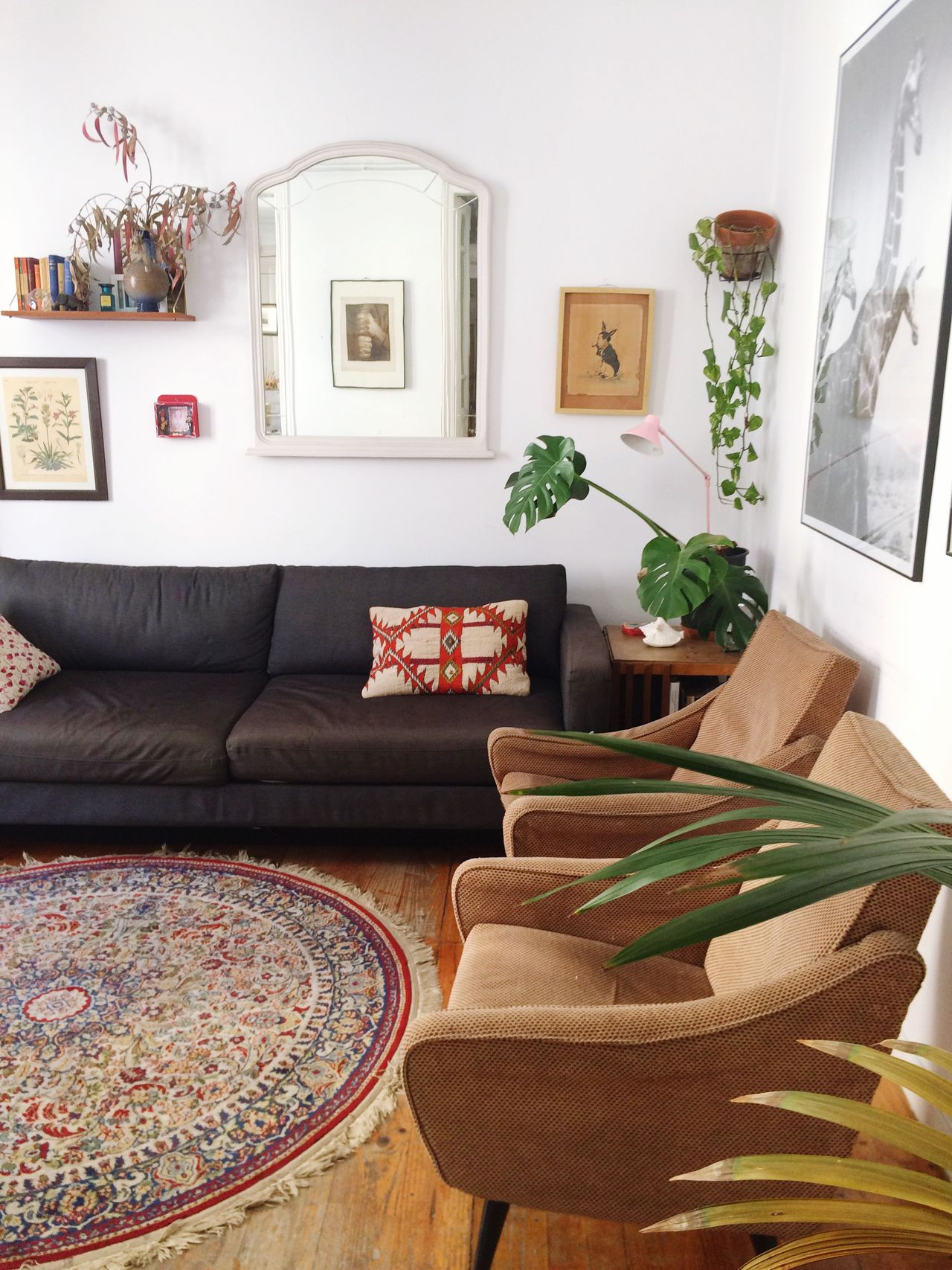 Beautiful stock photos of living room, Absence, Armchair, Barcelona, Carpet - Dcor
